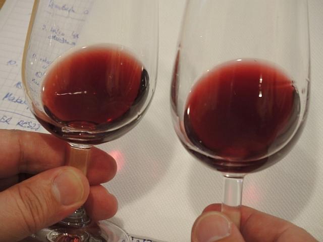 Na zajęcia w Podkarpackiej Akademii Wina co dwa tygodnie przez cały rok przyjeżdżają do Jasła ludzie z całej Polski. Uczą się trudnej sztuki winiarskiej od najlepszych fachowców w swoich dziedzinach. Pod okiem praktyków sami zakładają winnicę, opiekują się nią przez cały rok, uczą się oceniać i degustować wino. A na egzaminie dyplomowym muszą zaprezentować zrobione na zajęciach własne wino. Nabór na trzecią edycję Studium Praktycznego Winiarstwa 2017 już trwa. Liczba miejsc ograniczona.