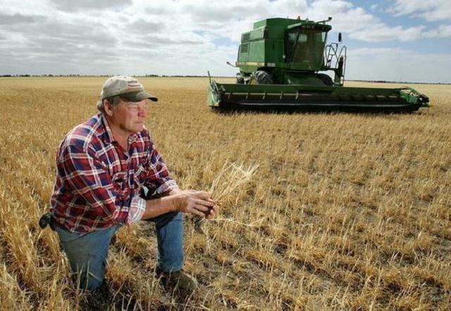 Czy banki oferują hipoteczne kredyty dla rolników?